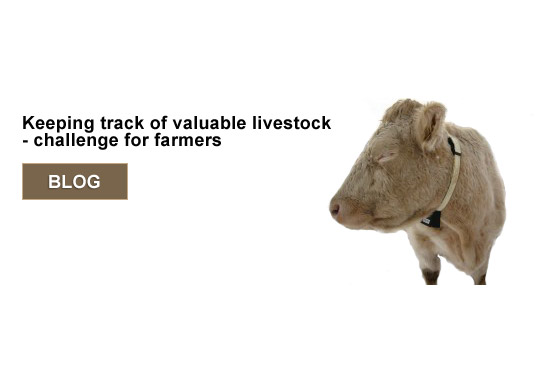 From Norwegian sheep to African elephants: Satellite-based M2M collars help track livestock