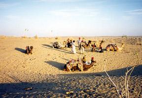 People-desert