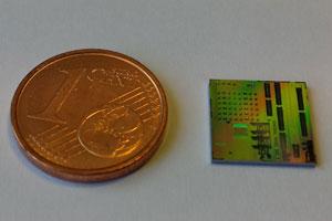 IRIS chip