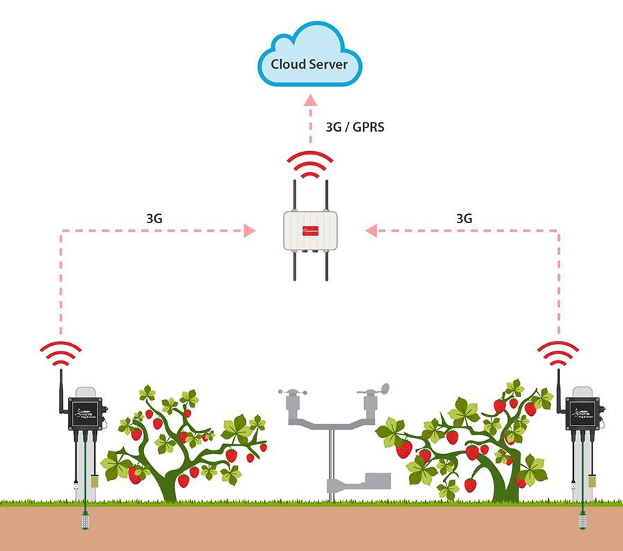 Waspmote Plug & Sense! Smart Agriculture schema