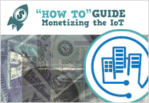 'How To' Guide: Monetizing the IoT