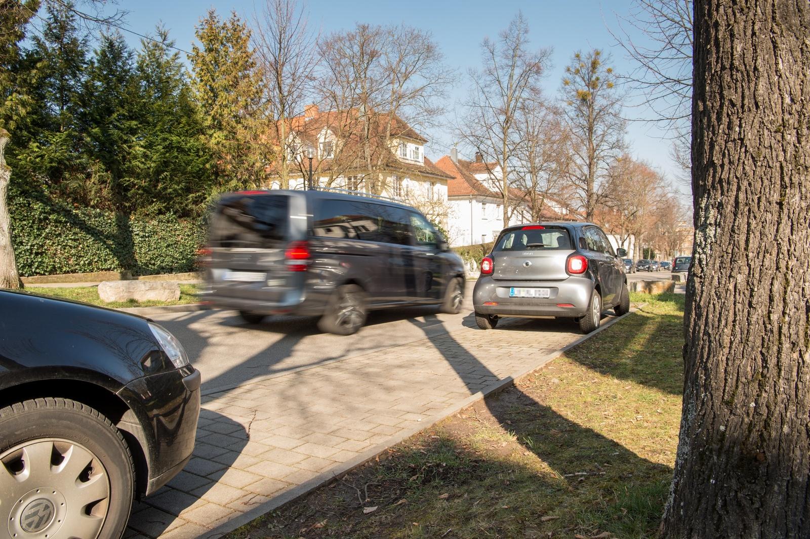 Bosch parking assists