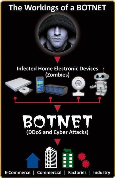Botnet web